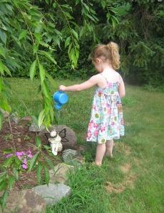 Dervish, gardening